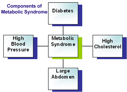 Metabolic Syndrome Components